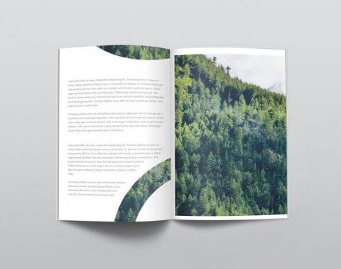 magazine-mockup3x-1000x750